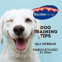 Register for Dog Training Q&A