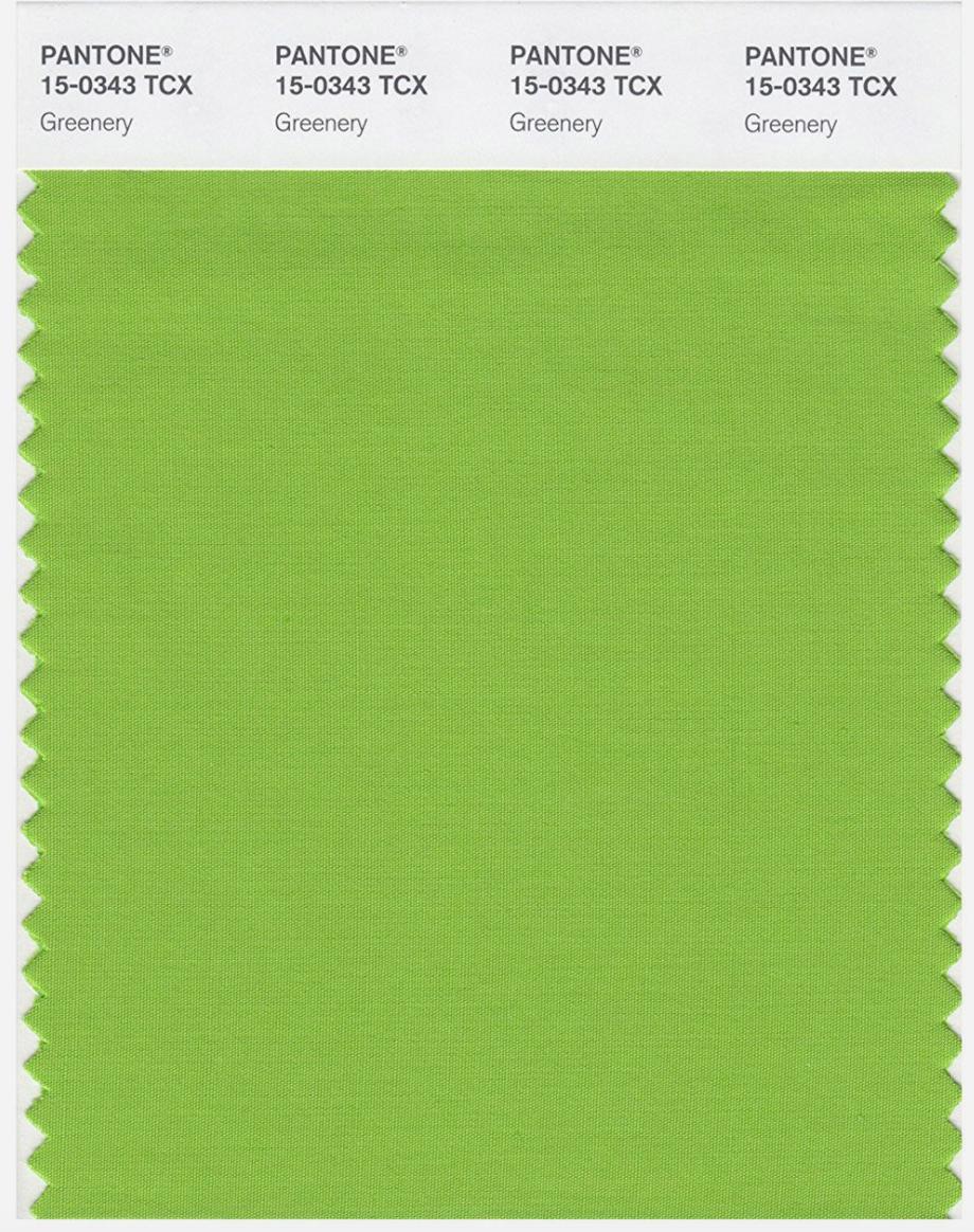 Colour Inspiration For 2017 Blog Post